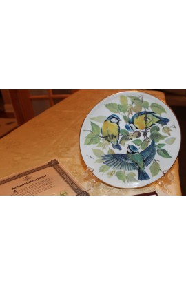 Tirschenreuth Porcelain The European Songbird Series by Ursula Band Collector Plate 1