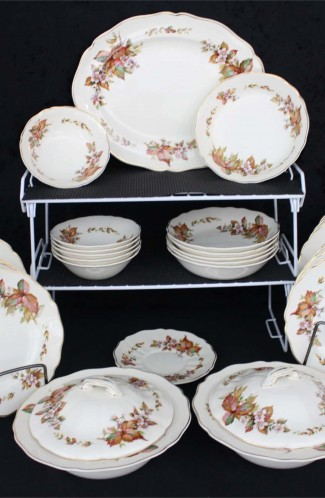 Royal Doulton Earthenware China Wilton Pattern D6226 C41 Vintage Dinnerware Service
