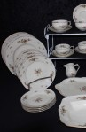 Rosenthal Continental China, Sanssouci Rose Ivory Pattern 20480 with Dinner and Salad Plates plus a Serving Bowl