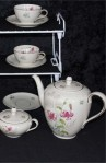 Bavaria Johann Seltmann VohenstrauB 1816 109 F Pattern Fine Bone China Tea Set , Cups , Saucers and Tea Pot
